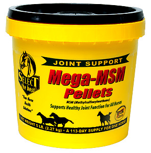 Equine Select The Best Mega-Msm Pelleted Supplement For Horses 5 Lbs.(2.27 Kg)