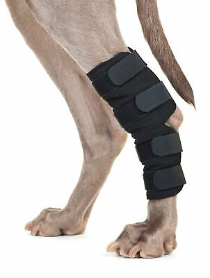 BACK ON TRACK Dog Hock Wrap Heat Therapy Aches Pain Circulation Medium Pair