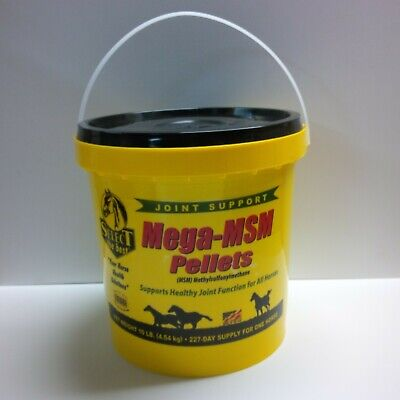Equine Select The Best Mega-Msm Pelleted Supplement For Horses 10 Lbs. (4.54 Kg)