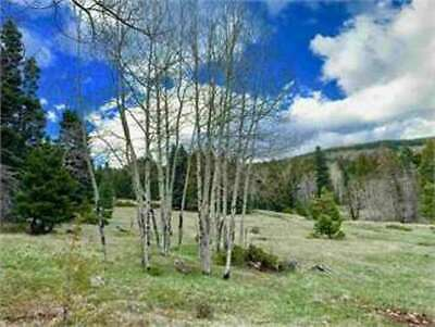 VACANT LOT at ANGEL FIRE RESORT, NM -  GET AWAY FROM IT ALL - Bankruptcy Sale!