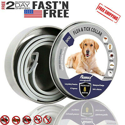 Dewel Cheaper than Seresto!Flea & Tick Collar for Large Dog 8 Months Protection