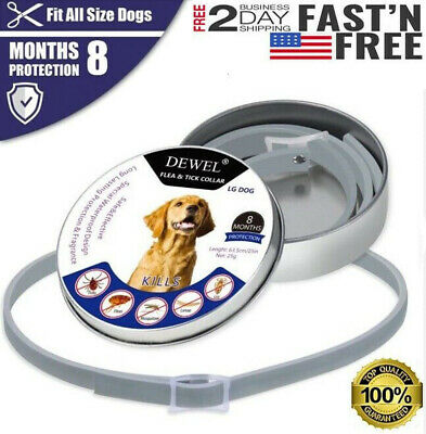 NEW DEWEL Flea And Tick Control Collar For Small Large Dog 8 Months Protection