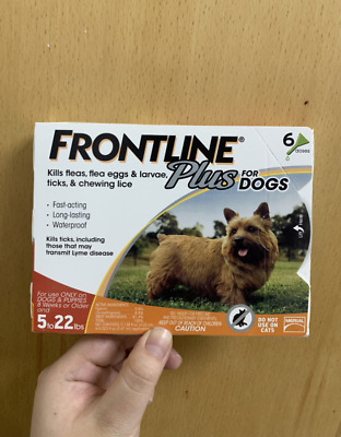 6 Doses Frontline Plus for Dogs Small Dog (5-22 pounds) Flea Tick Treatment