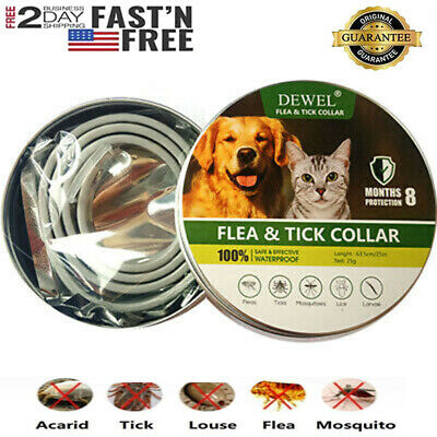 DEWEL Anti Flea and Tick Collar for Dog Cat 8Months Protection One Size Fits All