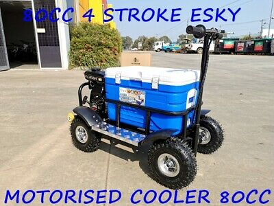 80cc Motorised Esky Cooler Scooter 4 Wheel Motorbike Atv Quad Icebox Esky Lifan