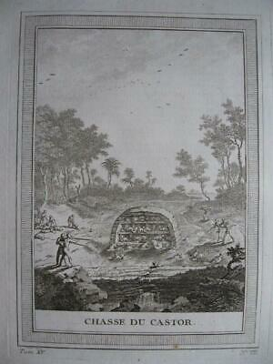 CANADA 1759 Engraving from PREVOST VOYAGES  Beaver hunting