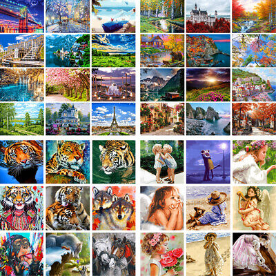 DIY Acrylic Paint By Numbers Kit Digital Oil Painting Artist Home Wall Decor