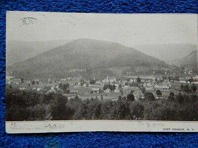 Vintage photo postcard East Branch NY 1906 birds eye aerial view