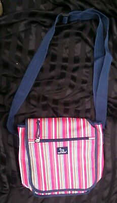Novo Norkisk diabetic health satchel bag waterproof inner pink hardly used