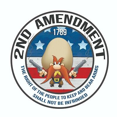 2nd Amendment  Government Gun Rights Decal Sticker