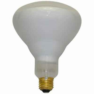 REPLACEMENT BULB FOR IWASAKI JT3043 75W 120V
