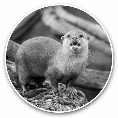 Awesome Fridge Magnet Oriental Small Clawed Otter Cool Gift #16432