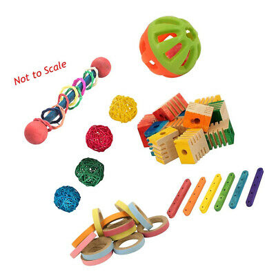 Parrot Essentials Foot Toy Kit For Medium And Large Parrots