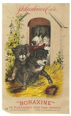 Boraxine Is Pleasant For The Hands 1882 Trade Card Dogs and Mouse J.D. Larkin