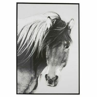 NEW Second Nature Wild Brumby Framed Wall Art