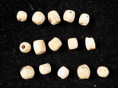 Pre-Columbian Collection of Shell Beads, Costa Rica