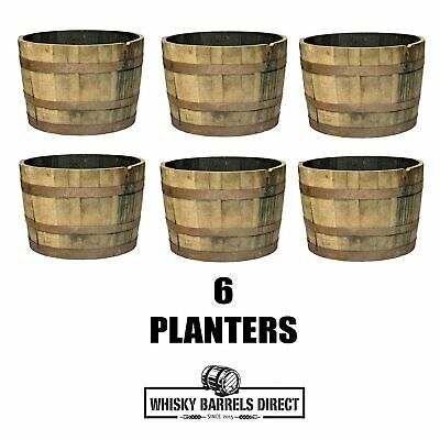 6 x OAK WHISKY PLANTER *FREE SHIPPING* GENUINE WHISKEY PLANT POT TUB