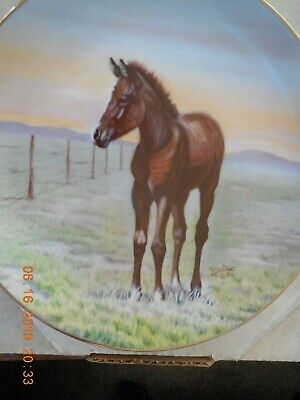 THE THOROUGHBRED  by PERILLO PLATE #646