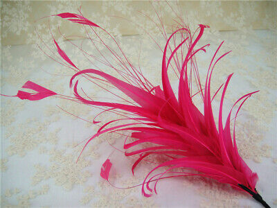 Goose Twisted Mount Peacock Millinery Hat Fascinator Trim Stripped Coque Feather