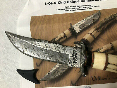 Williams  Hand Forged damascus hunting knife with Sambar stag buffalo horn New