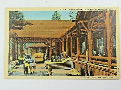 Vintage Postcard Canyon Lodge Yellowstone National Park Hand Tinted A5183