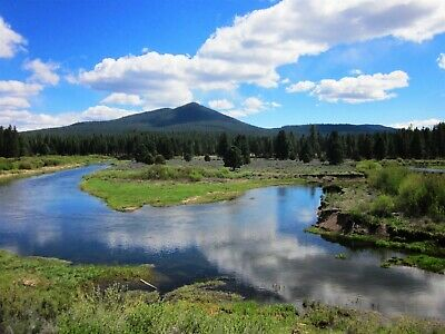 1.00 Ac~Oregon Waterfront Land~Gorgeous Lot On The Sprague River~Timbered~Cash
