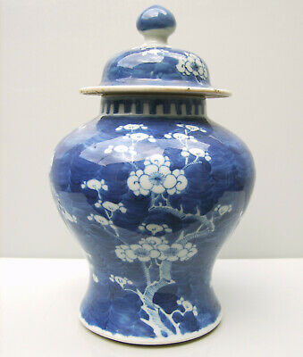 Chinese prunus blue and white jar and cover QIng