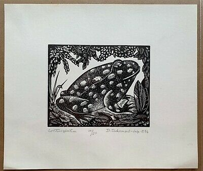 Contemplation - Wood Engraving Print by Dale DeArmond 10/25 1996