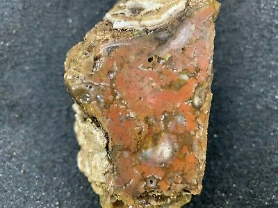 Large Lapidary rough Agate 1.5 lbs   74
