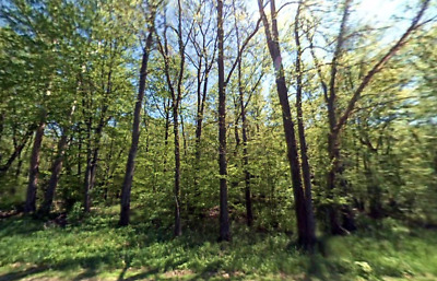 Private Waterfront Fishing Spot/Camping lot! FOR DEED Nashville, MI Riverfront!
