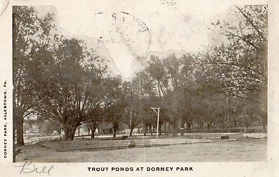 Trout Ponds at Dorney Park in Allentown PA 1906