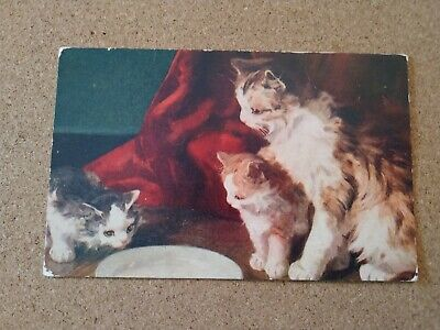 Vintage Cat Postcard. Art. Mom cat and her two kittens. Plate. USA postcard