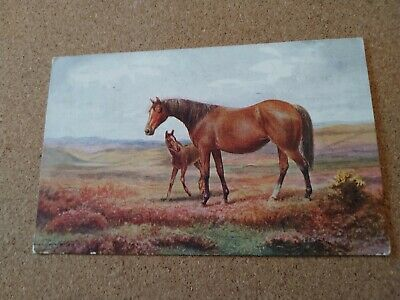 Vintage Horse Postcard. Art. Mare and foal. British Postcard. Not mailed.