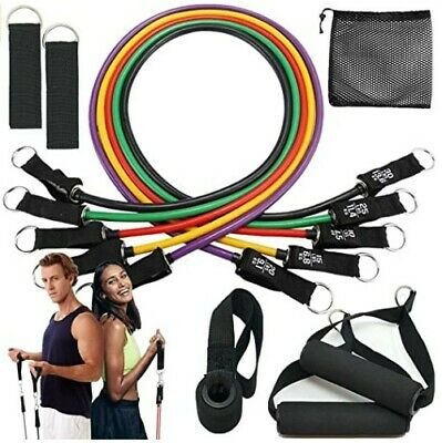Resistance Bands Set w/ 5 Exercise Bands w/ Handles, Carry Bag, Workout Booklet