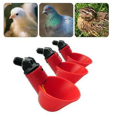 10/20X  Water Drinking Cup Chicken Fowl Drinker Bird Coop Automatic Feed Poultry