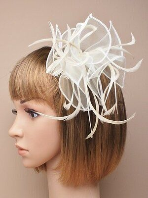 NEW Cream Large looped feather and fabric comb fascinator wedding races ascot