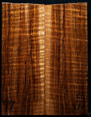 """Curly Koa #197 Knife Scales 5""""x 2""""x 7/16"""" see 100 species in my store"""