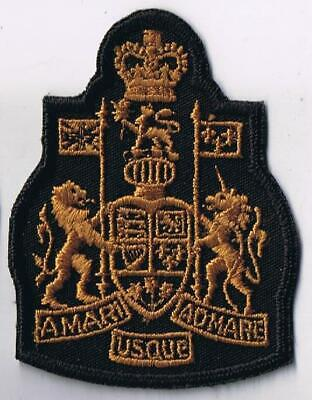 US Army Special Forces Warrant Officer Institute SFWOI para oval patch m//e