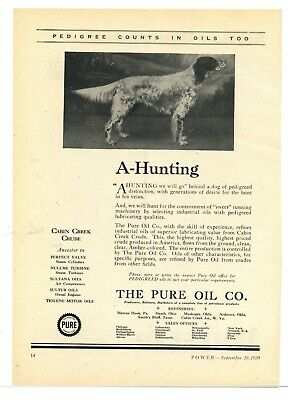 "1930 Pure Oil Ad: ""Pedigree Counts in Oils Too"" - Hunting Dog Pic, Cabin Creek"
