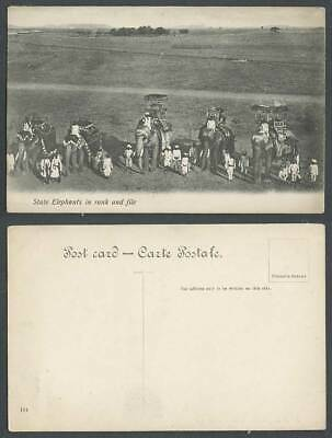 India Old Postcard State Elephants in Ranks and File Elephant Riders Ethnic Life