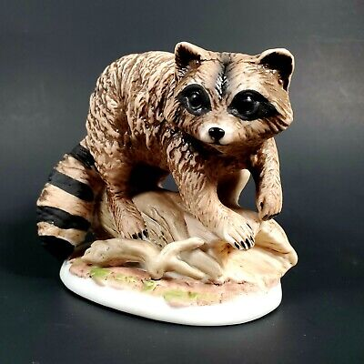 Racoon on a log 1423 Home Interiors