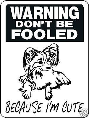 Papillon, Dog, Breed, Security, Aluminum Sign  3368
