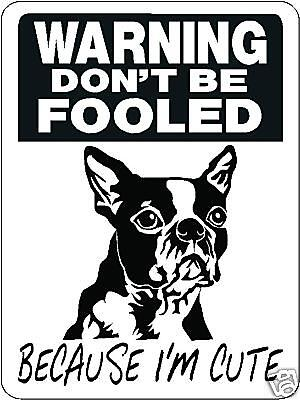 Boston Terrier Security Aluminum Sign Warning Dog 3339