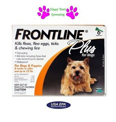 FRONTLINE PLUS 6 Pack/Month SMALL 0-22 lb*USA/EPA Approved*BEWARE OF COUNTERFEIT