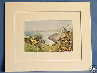 Carbis Bay Cornwall Antique Mounted Print 10 X 8  Rare