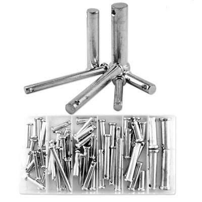 60pc Clevis Pin Assortment