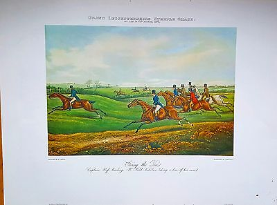 Large Steeple Chase Fox Hunting Print Horse Hounds Picture  Foxhunting Vintage