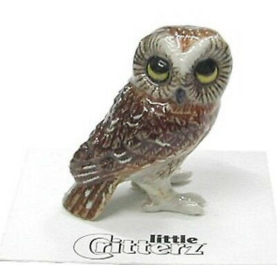 little Critterz Miniature- Saw-Whet Owl - LC567 (Buy 5 get 6th free!)
