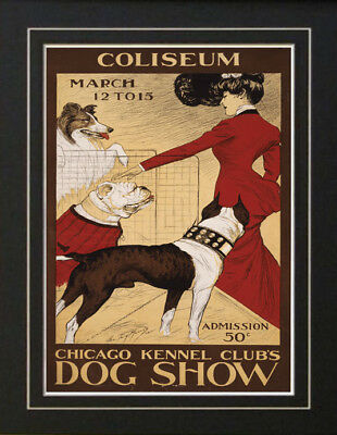 1901 Chicago Kennel Club Dog Show Poster Collie Bull