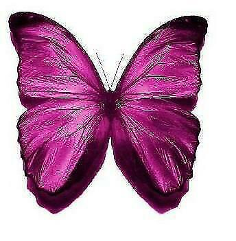 24 x MAGENTA BUTTERFLIES EDIBLE CUPCAKE TOPPERS CAKE RICE WAFER PAPER